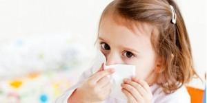 Средство от пыли в домашних условиях